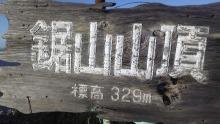 ルイージのだんぼーる★はうす-SBSH05581.JPG