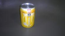 ルイージのだんぼーる★はうす-SBSH0631.JPG
