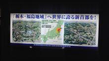 ルイージのだんぼーる★はうす-SBSH07851.JPG