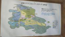 ルイージのだんぼーる★はうす-SBSH08061.JPG
