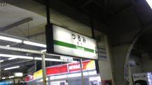 ルイージのだんぼーる★はうす-SBSH08561.JPG
