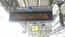 ルイージのだんぼーる★はうす-SBSH09331.JPG
