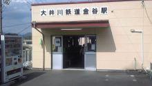 ルイージのだんぼーる★はうす-SBSH10301.JPG