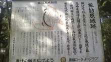ルイージのだんぼーる★はうす-SBSH10411.JPG