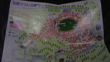 ルイージのだんぼーる★はうす-SBSH11561.JPG
