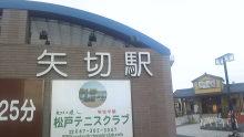 ルイージのだんぼーる★はうす-SBSH1353.JPG