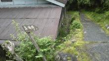 ルイージのだんぼーる★はうす-SBSH15061.JPG