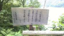ルイージのだんぼーる★はうす-SBSH15301.JPG