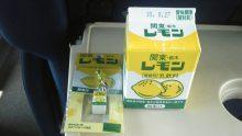 ルイージのだんぼーる★はうす-SBSH15431.JPG