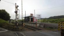 ルイージのだんぼーる★はうす-SBSH1586.JPG