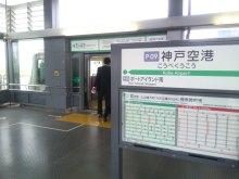 ルイージのだんぼーる★はうす-SBSH0010.JPG