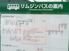 ルイージのだんぼーる★はうす-SBSH0015.JPG