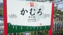 ルイージのだんぼーる★はうす-SBSH0107.JPG