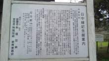 ルイージのだんぼーる★はうす-SBSH0298.JPG