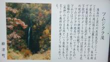 ルイージのだんぼーる★はうす-SBSH0313.JPG