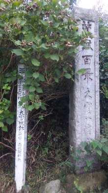ルイージのだんぼーる★はうす-SBSH0207.JPG