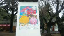 ルイージのだんぼーる★はうす-SBSH0209.JPG