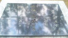 ルイージのだんぼーる★はうす-SBSH0375.JPG