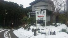 ルイージのだんぼーる★はうす-SBSH0536.JPG