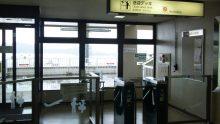ルイージのだんぼーる★はうす-SBSH0740.JPG