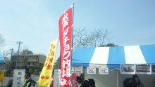 ルイージのだんぼーる★はうす-SBSH0822.JPG