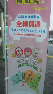 ルイージのだんぼーる★はうす-SBSH0857.JPG