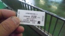 ルイージのだんぼーる★はうす-SBSH09561.JPG