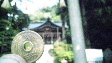 ルイージのだんぼーる★はうす-SBSH0158.JPG