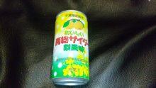 ルイージのだんぼーる★はうす-SBSH0206.JPG