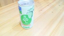 ルイージのだんぼーる★はうす-SBSH0243.JPG