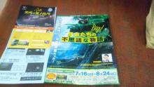ルイージのだんぼーる★はうす-SBSH0521.JPG