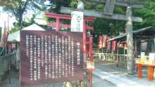 ルイージのだんぼーる★はうす-SBSH0668.JPG