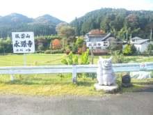ルイージのだんぼーる★はうす-SBSH0956.JPG
