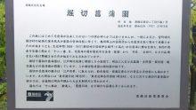 るいーじのだんぼーる★はうす-SBSH0563.JPG
