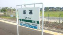 るいーじのだんぼーる★はうす-SBSH0592.JPG