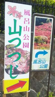 るいーじのだんぼーる★はうす-SBSH0593.JPG