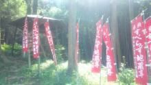 るいーじのだんぼーる★はうす-SBSH0364.JPG