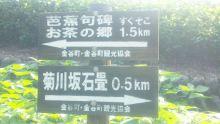 るいーじのだんぼーる★はうす-SBSH0366.JPG