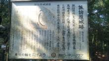 るいーじのだんぼーる★はうす-SBSH0378.JPG