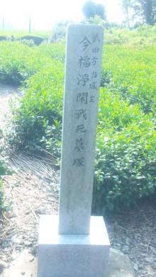 るいーじのだんぼーる★はうす-SBSH0382.JPG