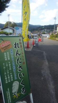 るいーじのだんぼーる★はうす-SBSH1055.JPG