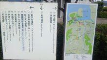 るいーじのだんぼーる★はうす-SBSH0503.JPG