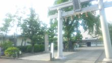 るいーじのだんぼーる★はうす-SBSH0573.JPG