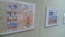 るいーじのだんぼーる★はうす-SBSH0584.JPG