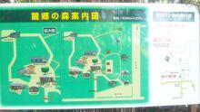 るいーじのだんぼーる★はうす-SBSH0577.JPG