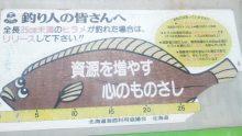 るいーじのだんぼーる★はうす-SBSH0720.JPG