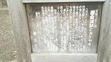 るいーじのだんぼーる★はうす-DSC_0102.JPG