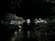 るいーじのだんぼーる★はうす-DSC_0609.JPG