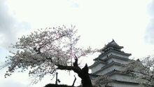 るいーじのだんぼーる★はうす-DSC_0673.JPG