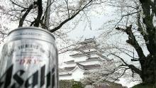 るいーじのだんぼーる★はうす-DSC_0675.JPG